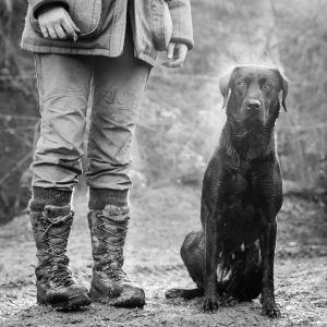 Fieldsports Photography by Gerry Slade-