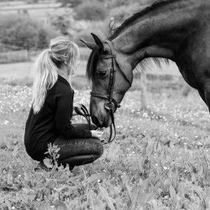 Horse Photography Gerry Slade-30