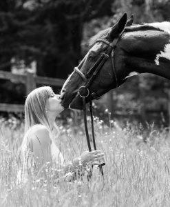 Horse Photography Gerry Slade-3671
