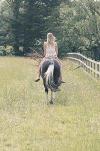 Horse Photography Gerry Slade-3734