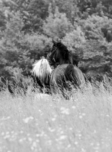 Horse Photography Gerry Slade-4136